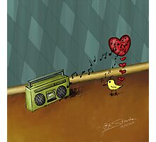 The bird in love with the radio Photographic Print