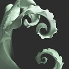 Final Twirl  by Nikki Trexel
