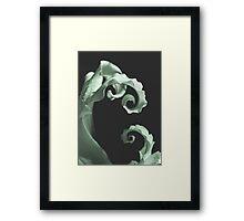 Final Twirl  Framed Print
