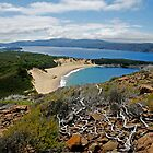 Crescent Bay - Tasman National Park, Tasmania by Eve creative photografix