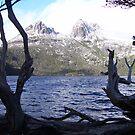 iconic snowy Cradle Mt, Tasmania by gaylene