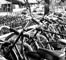 Amsterdam Bike Park by Stephen Thomas Green