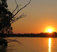 Nagambie Sunset by Tristen Murray