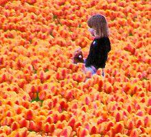 Tulip Stroll by Jennifer Vickers