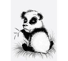 Small panda Photographic Print