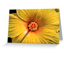 Buttery Yellow Hibiscus Greeting Card