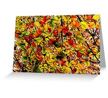 Abstract Autumn Greeting Card