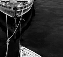 Boat Trips Sticker