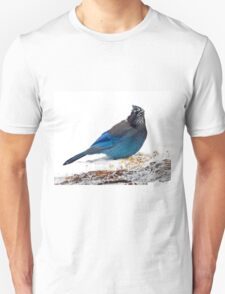 Mountain Jay on Snowy Feeder T-Shirt