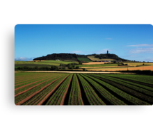 Scrabo In View Canvas Print