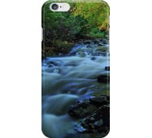 Autumn Falls iPhone Case/Skin