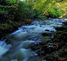 Autumn Falls by Wrayzo