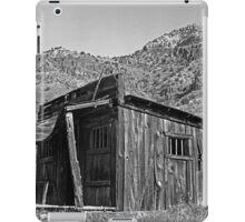 Canyon Cabin iPad Case/Skin