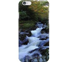 Tollymore Autumn Delight iPhone Case/Skin