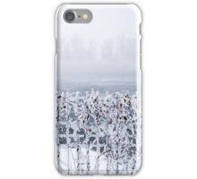 Frozen fence iPhone Case/Skin