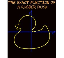 Harry Potter The exact function of  a rubber duck Photographic Print