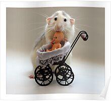 The Babysitter. Poster
