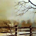 Old Fence by Barry W  King