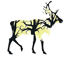 Silhouette of a deer with forest inside Photographic Print