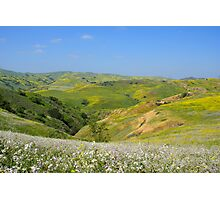 Colorful Hills Photographic Print