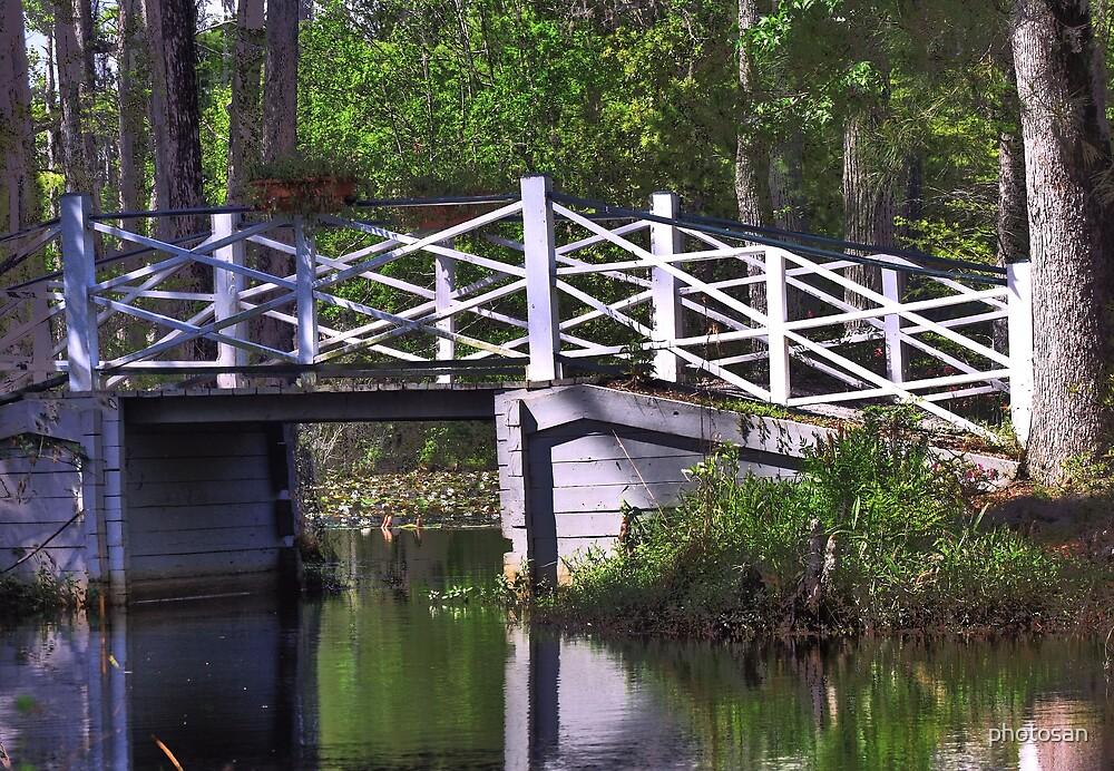 Lagoon Bridge by photosan