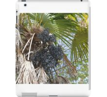 Have You Ever Dated a Date Tree? iPad Case/Skin