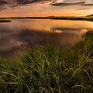 Provincetown Tidelands by Philip James Filia