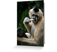 White Cheeked Gibbon Greeting Card