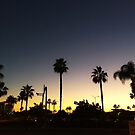 OC Sunsets by omhafez
