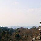 Kyomizu Panorama by demistified