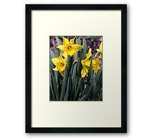flower 07 Framed Print