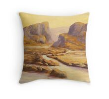 Desert Sunsets Throw Pillow