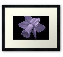 flower 26 Framed Print