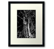 Heavy metal tree trunk Framed Print