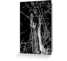 Heavy metal tree trunk Greeting Card