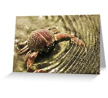 Mr. Crabs Greeting Card