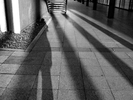 New Shadow by Matt Roberts