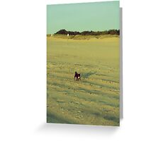 Run Cocoa, Run Greeting Card