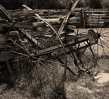 Hay Rake     by Gary L   Suddath