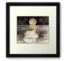 In the Moonlight Framed Print