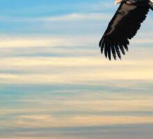 CONDOR FLYING FREE AGAIN over CALIFORNIA Sticker