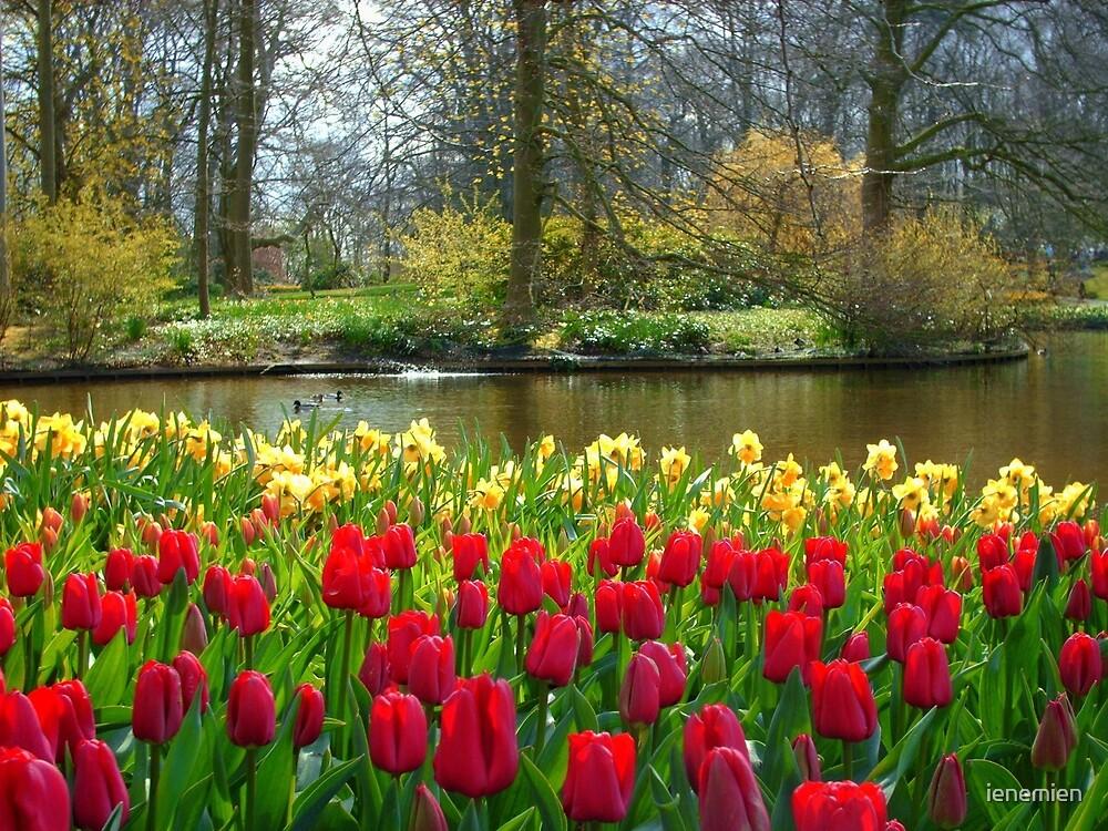Its Spring!! by ienemien