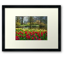Its Spring!! Framed Print
