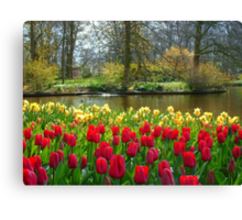 Its Spring!! Canvas Print