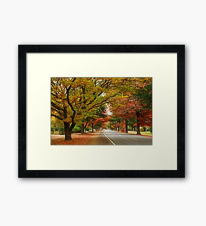 Delany Avenue - Bright Framed Print