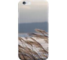 Winter winds iPhone Case/Skin