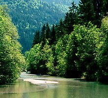 Tegernsee River Trail  by kevin smith  skystudiohawaii