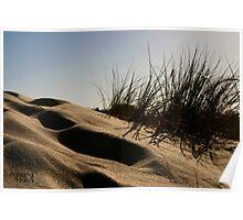 Golden Beach Dune 2 Poster