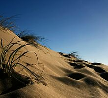 Golden Beach Dune 1 by Richard Heath
