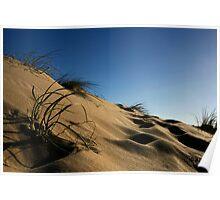 Golden Beach Dune 1 Poster